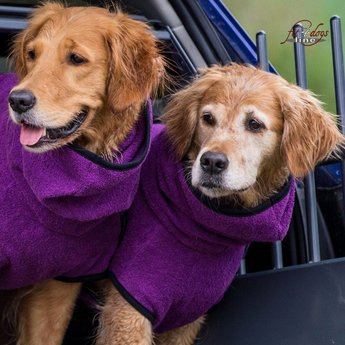 Fit4dogs Dryup Cape - BILBERRY
