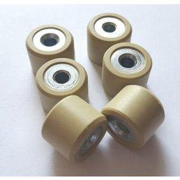 AJS Variator rollers 16mm x 13mm 5g   Digita 50cc    Bin 70