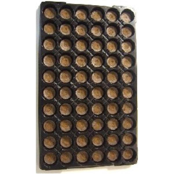 7 tray 60 stuks 41 mm