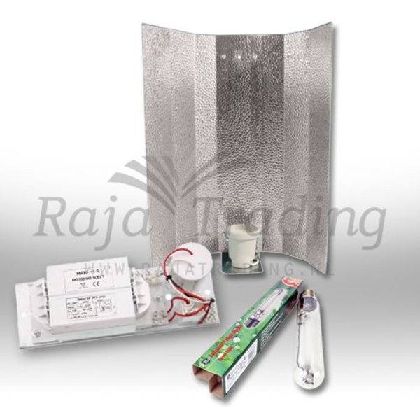 GE Lucalox 600 Watt Kweeklamp set
