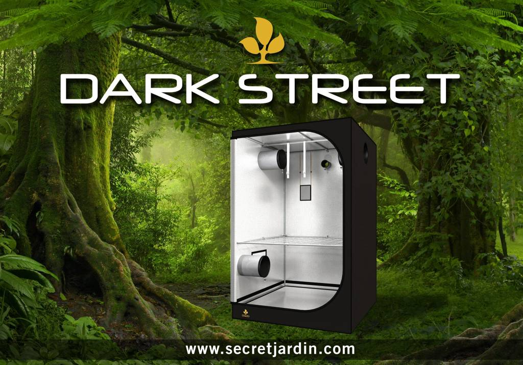 Dark Street Tent Secret Jardin