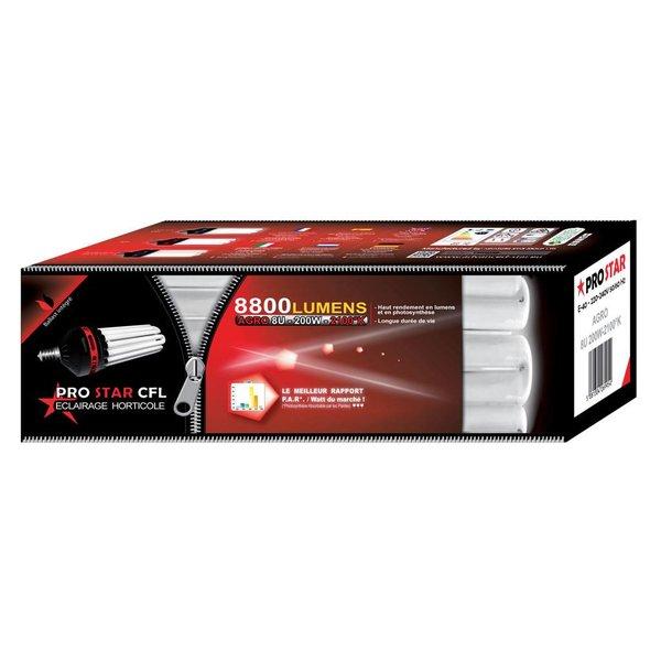 Prostar CFL Spaarlamp 200W Bloei