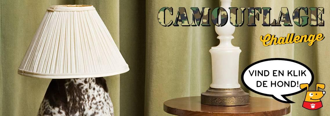 De Dogsies Camouflage Challenge!