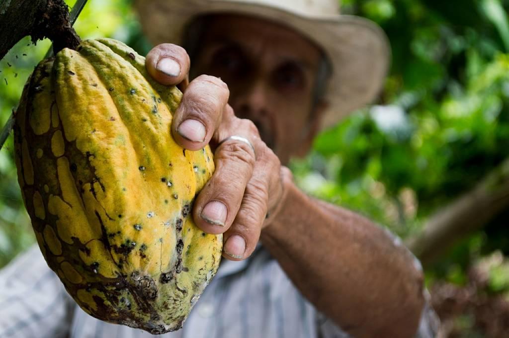 Een spreekbeurt over Fair Trade chocolade houden? 4 tips!
