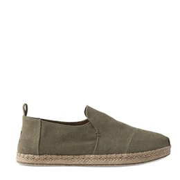 Toms Decnalp Canvas