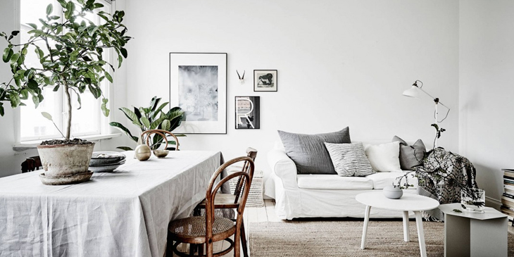 Scandinavian Interior design living room