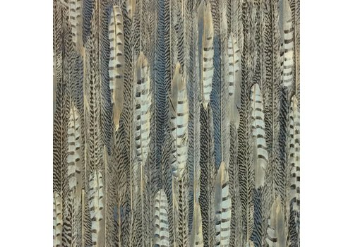 BN Wallcoverings Curious 17967