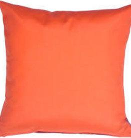 "Gotcha Covered Melon Sunbrella 20"" Pillow"