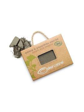 Couleur Caramel Lidschatten n°118 - grau grün matt - refill