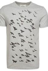 armedangels armedangels, James Crows, grey melange, XL