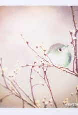 armedangels Armedangels, Uma Little Bird, white, XS