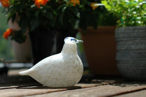 BIRDS BY TOIKKA, WILLOW GROUSE