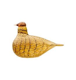 BIRDS BY TOIKKA, SUMMER GROUSE