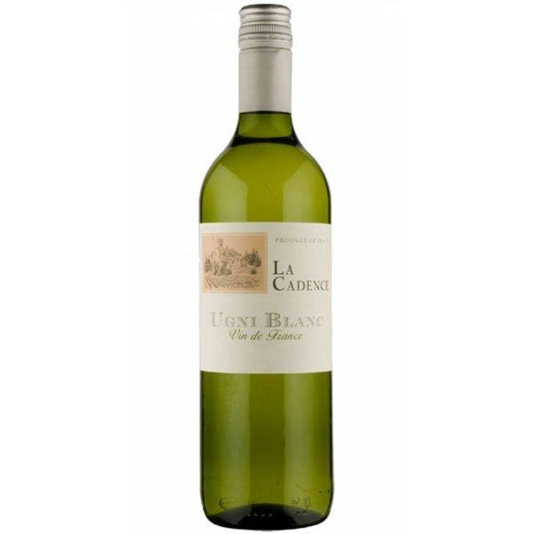 Pellegrini Blanc de Blancs Vin de France 2015