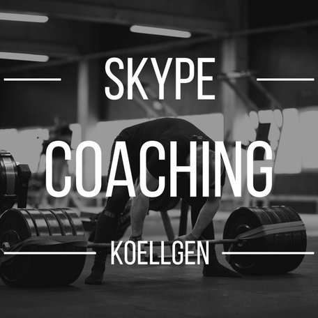 Skype Coaching (Koellgen)