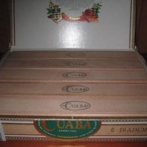 Cuaba  Diademas (5er Kiste)
