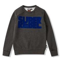 Donkergrijze sweater Round Neck