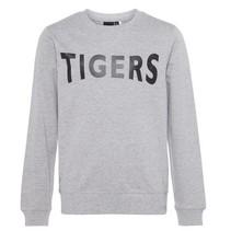 Grijze sweater Alexanderni
