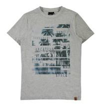 Grijs t-shirt Rimano