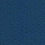Timeless Treasures Katoen - Timeless Treasures - Dash Scallop - Blue