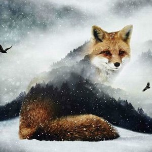 Katoen - Paneel 'Call of the wild' - vos