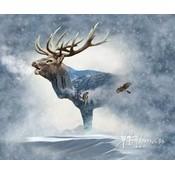 Katoen - Paneel 'Call of the wild' - eland