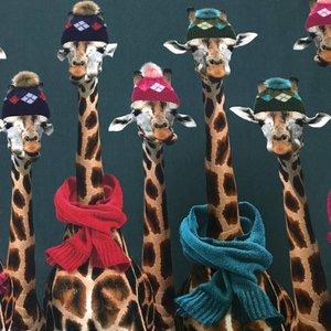 Tricot - Giraffen in de winter