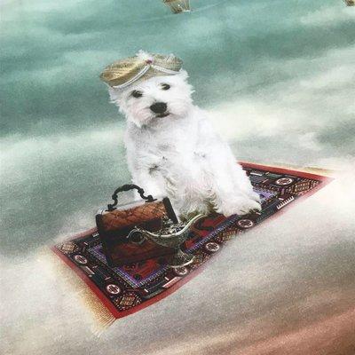 Tricotpaneel - Hondje op vliegend tapijt