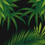 Katoen - Botanical Black