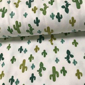 Tricot - Cactus