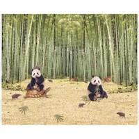 Tricotpaneel - Panda en schildpad