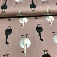 Tricot  Stenzo - Witte zwanen, zwarte zwanen