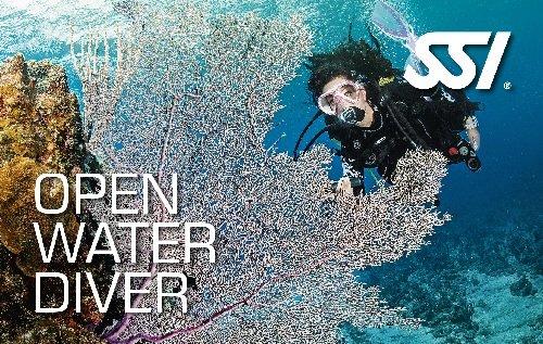 SSI open water diver duikopleiding in Nederland