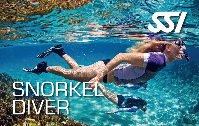 Leren snorkelen via onze snorkelcursus