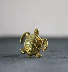 Doorknob Turtle