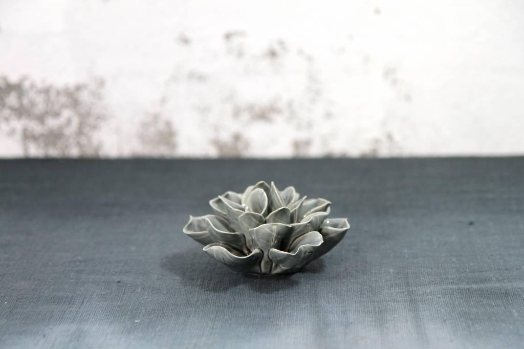 Blooming Flower II