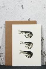 Ink Amsterdam | Shrimps