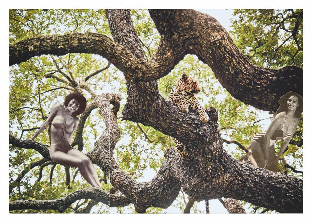Ilse Gijsberts 'Tree Of Lust' - Print Only
