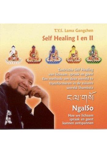 Yogi & Yogini naturals Cd Self Healing I en II T.Y.S. Lama Gangchen