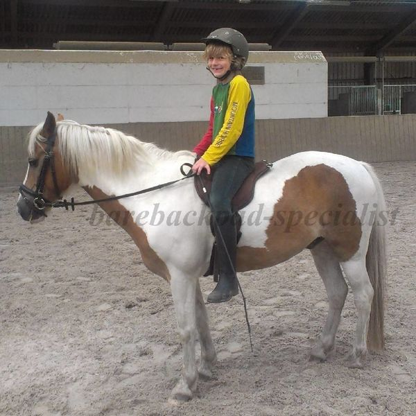 Barefoot Barefoot Ride on Pad shetty pony barebackpad