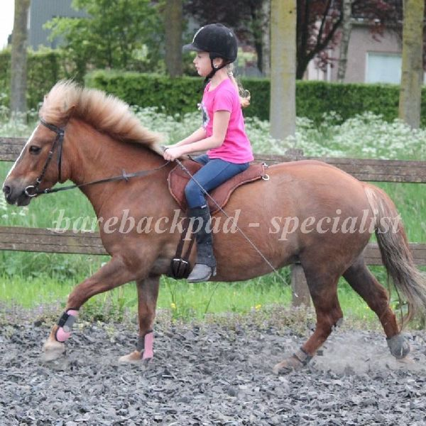 FRA FRA Dardo pony-shetty barebackpad