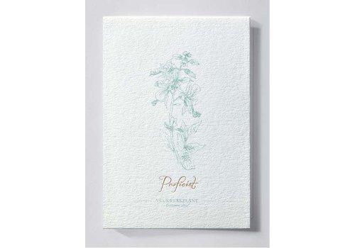 Papette Papette Greeting Card Vuurwerkplant - Proficiat