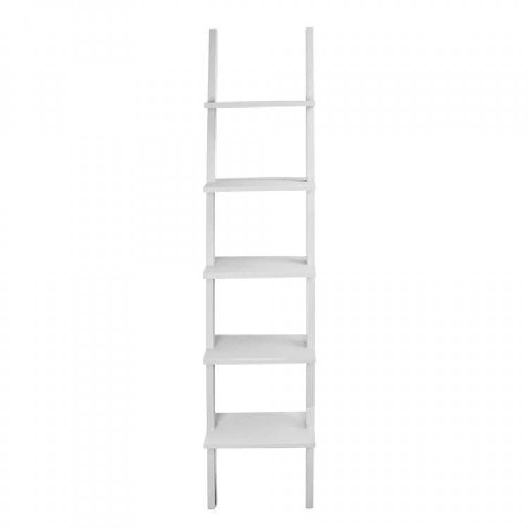 HOME SOCIETY library ladder