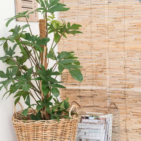 Ib Laursen Mand  Bamboo /metaal L  9199-00