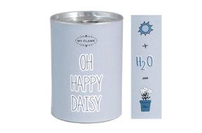 Bloemen in blik - Oh happy daisy