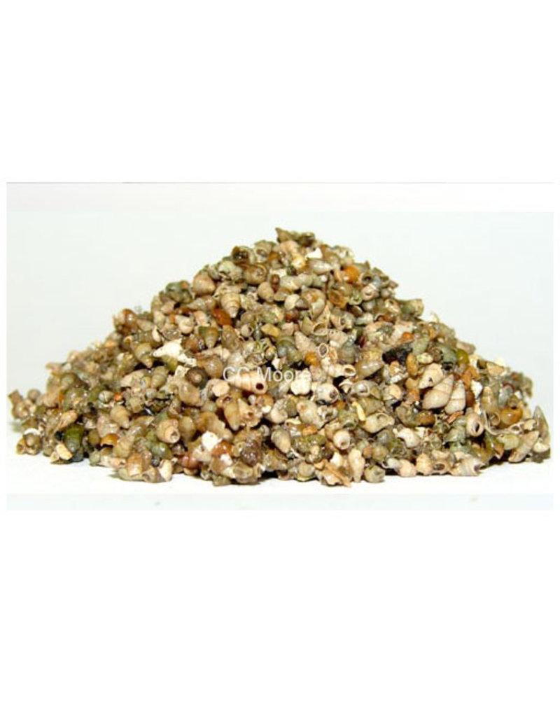 CC Moore CC Moore Frozen Water Snails 500g