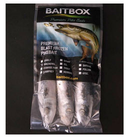 Kent Tackle Baitbox Pike Baits Joey Mackerel