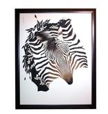 African wild Zebra B004