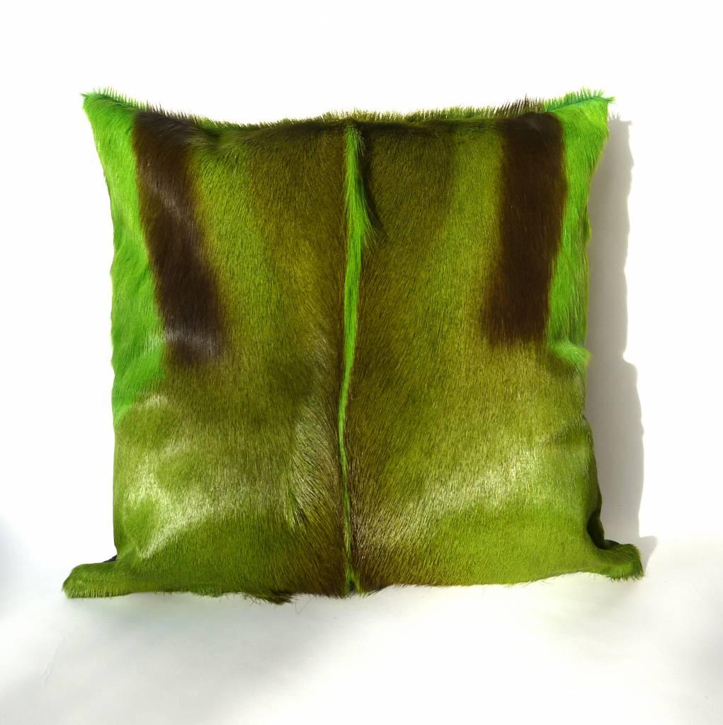Springbockfell Kissen Grün