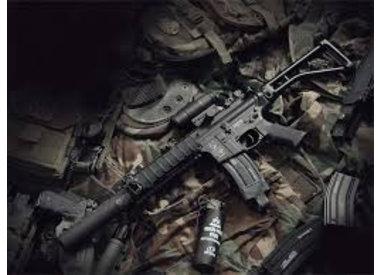 Elektrische Guns AEG